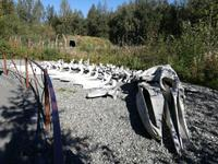 Anchorage - Alaska Native Heritage Center