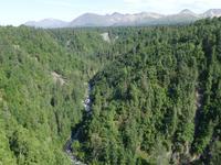 17. Tag Zugfahrt mit dem Alaska Wildness Express nach Anchorage (66)