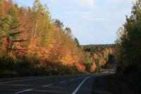 Indian Summer im Algonquin-Park