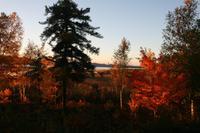 Idylle am Lac Taureau