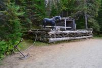 Algonquin Logging Museum Trail