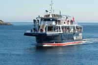 Unser Whale Watching-Boot