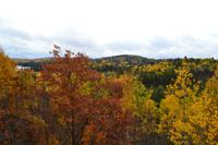 Algonquin Provincial Park - Ausblick vom Besucherzentrum