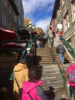 Stadtrundfahrt in Québec - Halsbrechertreppe