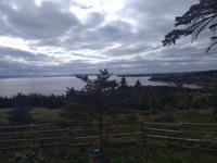 20. Landschaft auf Cape Breton Island (2)