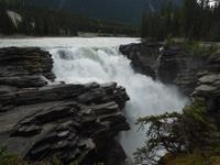 343 Athabasca Wasserfälle