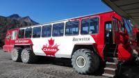 Ice Explorer auf dem Athabasca Gletscher