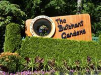214 Vancouver Island - Butchart Gardens