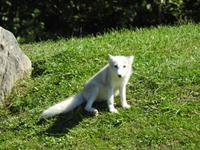 Omega Wildlife Park