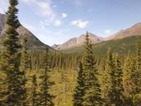 17. Tag Zugfahrt mit dem Alaska Wildness Express nach Anchorage (12)