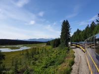 17. Tag Zugfahrt mit dem Alaska Wildness Express nach Anchorage (34)