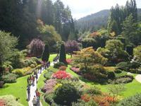 Butchart Garden in Vancouver Island