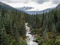 White Pass & Yukon Bahn
