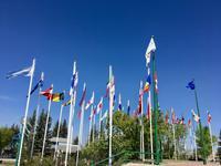 Fahnen der Olympiade 1988