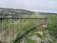 Alte Brücke am White Pass