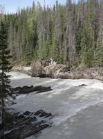 Motiv von der Natural Bridge