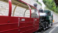 208 Fahrt mit der Brienzer Rothornbahn
