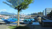 310 Blick über den Vierwaldstätter See