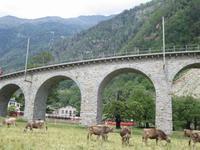 Kreisviadukt in Brusio- der Zug kommt !