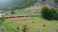 Fahrt mit dem Bernina-Express - Kreisviadukt  Brusio