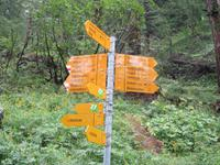 Wanderung, ein Stück auf dem Ahornweg entlang
