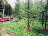 Glacier-Bernina-Reise, Fahrt mit dem Bernina-Express -