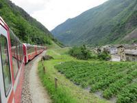 Glacier-Bernina-Reise, Fahrt mit dem Bernina-Express -  bei Brusio