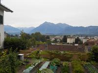 Stadtführung in Thun