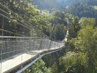 Goms (Bellwald-Hängebrücke)
