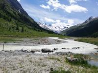Mit Pferdekutschen ins Val Roseg
