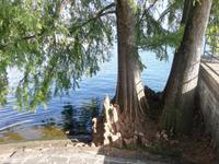 Locarno, am Lago Maggiorre