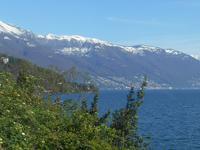 Lago Maggiore-Rundfahrt