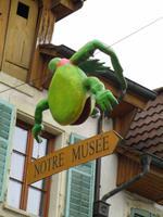 Froschmuseum