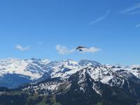 Auf dem Stanserhorn - Drachenflieger