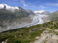 Moosfluh - Blick zum Aletschgletscher