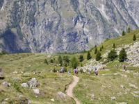 Zermatt - Wanderung auf dem Blumenweg - Matterhorn