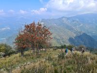 Die letzte Wanderung, hoch hinauf und um den Monte Boglia herum
