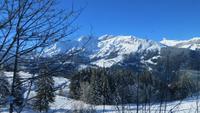 0009 Ausflug zum Jungfraujoch