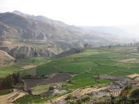 IMG_4388 Das Colca Tal