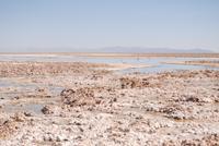 Chaxa-Lagune im Salzsee