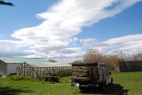 Nandu-Farm