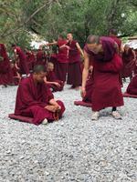 Lhasa - Sera Kloster, Debattierstunde
