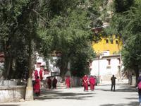 Mönche im Sera-Kloster