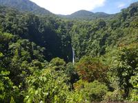 17 Tage Rundreise Costa Rica – einzigartige Naturreise San José – Vulkane Poas & Arenal – Braulio Carrillo NP – Cahuita NP – Tortuguero NP – Monteverde – Santa Elena – Carara NP – Marino Ballen (953)