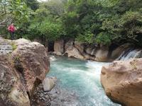 17 Tage Rundreise Costa Rica – einzigartige Naturreise San José – Vulkane Poas & Arenal – Braulio Carrillo NP – Cahuita NP – Tortuguero NP – Monteverde – Santa Elena – Carara NP – Marino Ballen (1381)