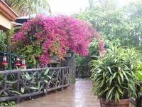 Im La-Paz-Waterfall-Garten