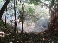 Rincon de la Vieja Vulkan Gebiet