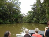 038 Costa Rica - Tortuguero - Bootsfahrt