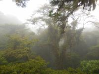 080 Costa Rica - Santa Elena Resort