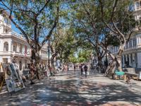 Prado Havanna